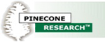 Legitimate paid surveys-PineCone Research review